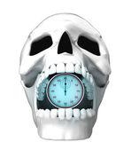 Human skull — Stockfoto