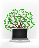New laptop in front of green tree — Stock Vector