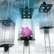Happy pig in the middle elevator — Stock Photo #48747019
