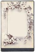 Flowers frame background — Stock Photo