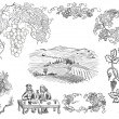 Vineyard illustration - Stock Photo