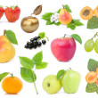 Fruits set - Stockfoto