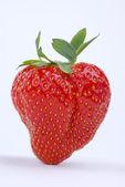 Strawberrie — Stok fotoğraf