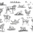 Stock Photo: Animals set illustration