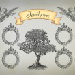 Family tree — Stock Photo #21891835
