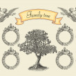 Family tree — Stock Photo #21891979