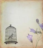 Gabbia con uccelli disegnati in stile retrò — Foto Stock