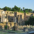 Ruins of the Roman Forum (Foro Romano) in Rome, Italy — Stockfoto