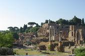 Ruins of the Roman Forum (Foro Romano) in Rome, Italy — Stock Photo