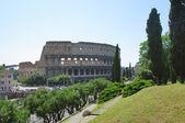Roma kolezyum kalıntıları — Stok fotoğraf