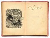 Ilustração de dragão — Fotografia Stock