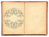 Ilustração de livro antigo — Foto Stock