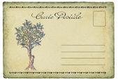 Antigo cartão postal — Fotografia Stock