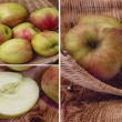 Apple collections  Apples from a village — Stock Photo