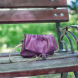 Forgotten Dorothy bag in a park on a bench — Stock Photo