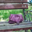 Stock Photo: Forgotten Dorothy bag in park on bench