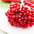 Stock Photo: Fruit plants viburnum