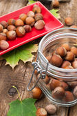 Fruits of hazelnut — Stock Photo