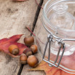 Desk with empty dishes and hazelnut fallen foliage — Stock fotografie