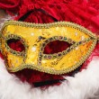 Carnival,new year's mask — Stock Photo