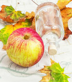 Apple autumn harvest — Stock Photo