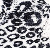 Cut textile matter leopard coloring — Stock fotografie