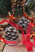 Christmas winter holidays — Stock Photo