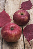 Sweet apple — Stockfoto