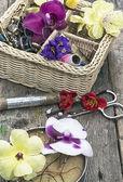 Dikiş araçlarını ve çiçek süslemeleri — Stok fotoğraf