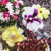 Different flowers — Stock Photo