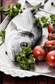 Mediterranean fish delicacy Dorado — Stock Photo