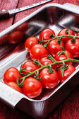 Tomatoes on branches — Stock Photo