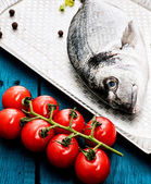 Fish delicacy — Stock Photo