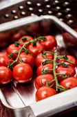 Delicious fresh tomatoes on branches — Stock Photo