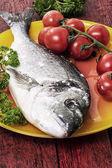 средиземноморская рыба — Стоковое фото