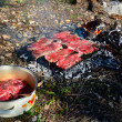 BBQ in wilderness — Stock Photo