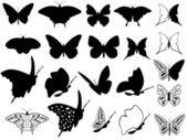 Butterflys — Stock Vector