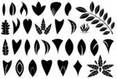Leaf shapes — Stock Vector