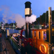 Stock Photo: Steamboat Hercules moored at night