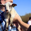 Man in blue shirt holding new born lamb — Stock Photo