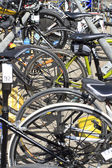 Competition race bikes parked in a row — Stock Photo