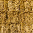 Stock Photo: Wall of dried straw