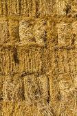 Muro di paglia secca — Foto Stock
