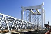Most kolejowy przez rzekę maas — Zdjęcie stockowe
