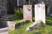 Gravestones in a sunny country cemetery — Stock Photo