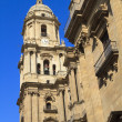 Malaga Cathedral against a deep blue sky - Stock Photo