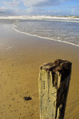 Wooden pole with sea in the background — Stock Photo