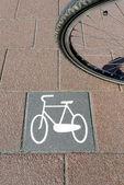 Bicycle path no.8 — Stock Photo
