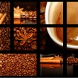 Collage of coffee motives — Stock Photo