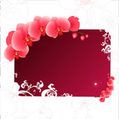 Orchid background on red — Stock Vector